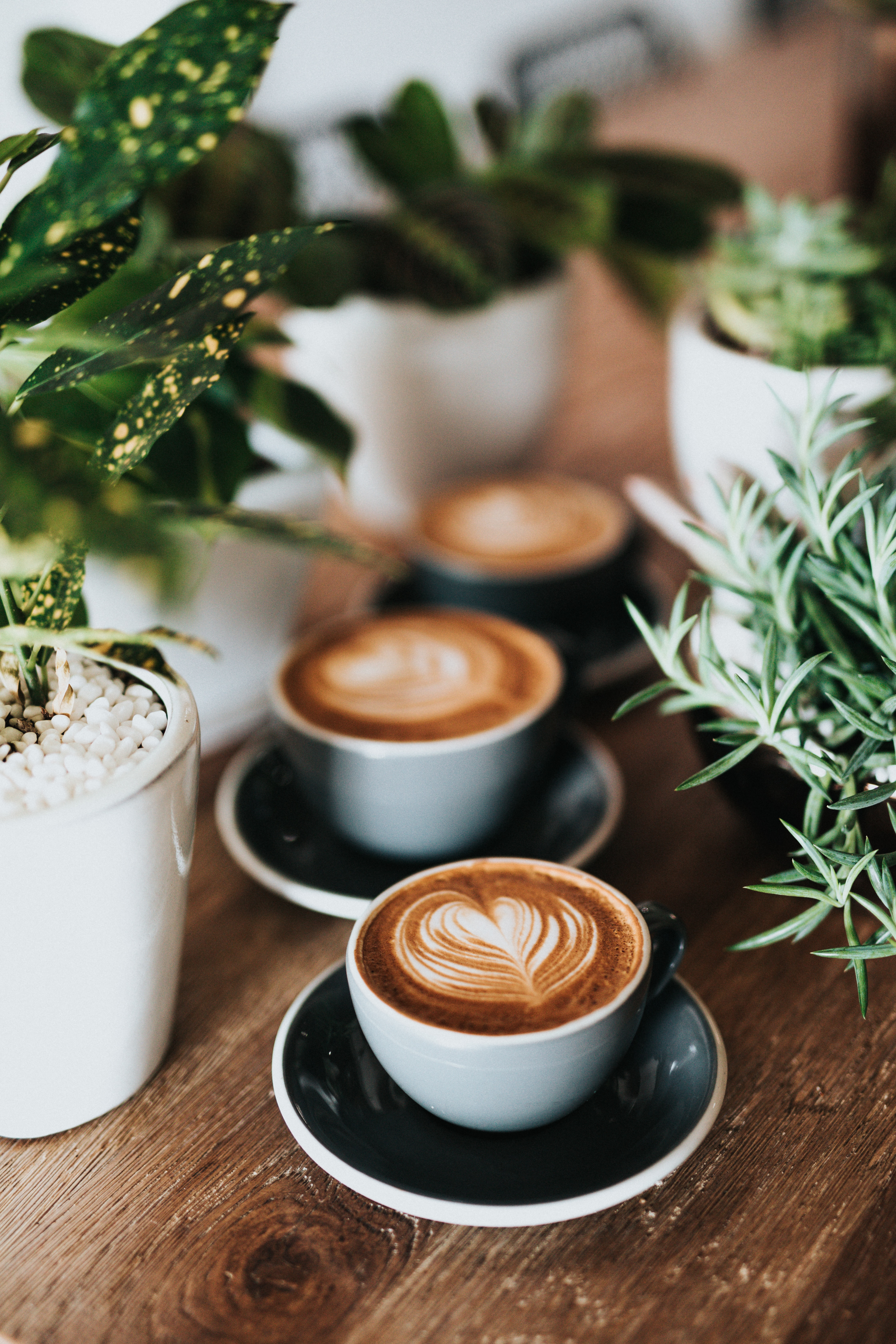 Coffee is for Closers | Access Capital